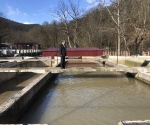 Tarım Müdürü Şahin, Balık üretim tesisinde incelemelerde bulundu