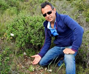 Endemik bitkileri toplayanlara ağır para cezası