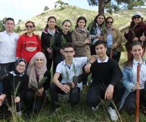 Burhaniye'de hemşire adayları ağaç dikti