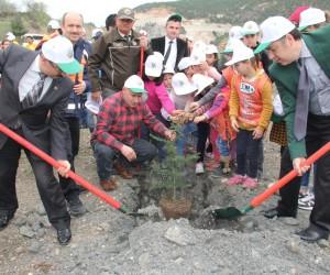 """Niksar'da """"15 Temmuz Şehitleri Hatıra Ormanı"""" kuruldu"""