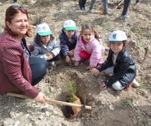 Akyar'da Ağaç Bayramı