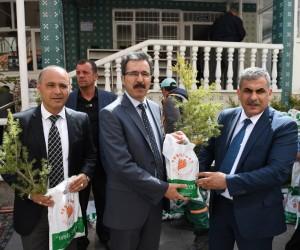 Yeşilyurt Belediyesi'nden 4 yılda 65 bin fidan