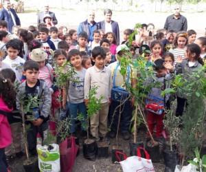 Öğrenciler Orman Haftası'nda fidan diktiler