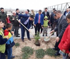 Lise öğrencilerinden ağaç dikme etkinliği