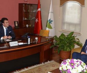 Atletizmin Merkezi Osmangazi