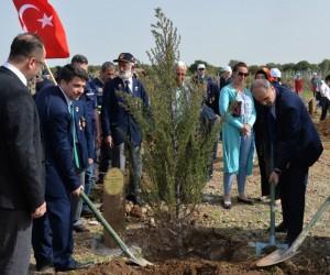 Kahramanmaraş'ta 'Şehitler Ormanı' kuruldu