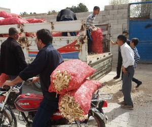 7 ton sarımsağı bedava dağıttı