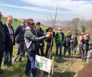 İzmit Belediyesi'nden meyve yetiştiriciliği eğitimi
