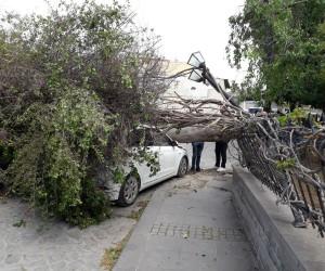 Tarsus'ta fırtına etkili oldu