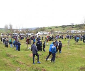 İBB futbol akademisi öğrencileri hatıra ormanı oluşturdu