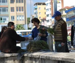 Aydın'da kedirgen otu garibana iş, zengine aş oldu