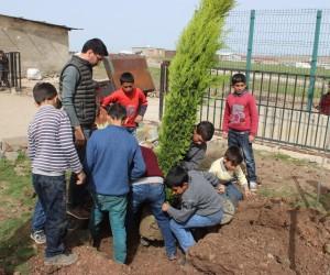 Öğrenciler ağaç olmayan kırsal mahale ağaç dikti
