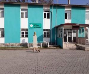 Turkuaz rengi Aslanapa Halk Eğitimi Merkezi Müdürlüğü'nün sembolü oldu