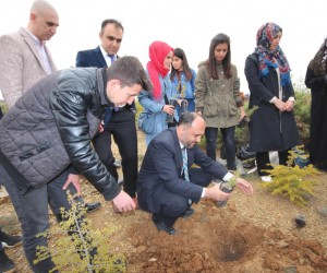 Beyşehir'de 2023 adet orman fidanı toprakla buluşturuldu