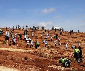 Gaziantep'te 300 öğrenci 30 bin fidanı toprakla buluşturdu