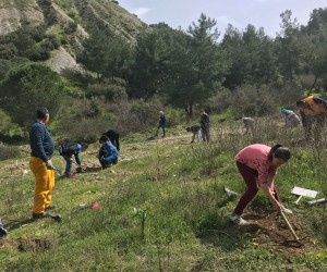 Öğrenciler, çam fidanlarını toprakla buluşturdu