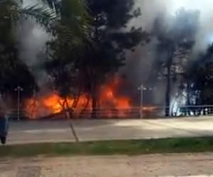 Antalya Atatürk Parkı'nda korkutan  yangın (1)