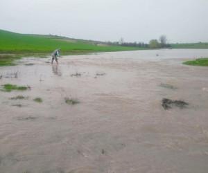 Edirne'de sağanak yağış göl ve barajları doldurdu
