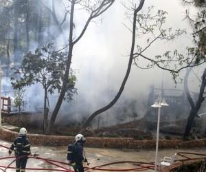 Antalya Atatürk Parkı'nda korkutan yangın (2)