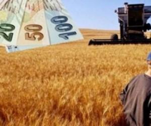 Geri dönene devletten 30 bin lira