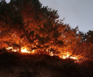 Yangın bölgesine İnegöl'den destek