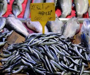 Sezonun ilk hamsisi 15 liradan satılıyor