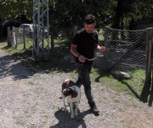 """Köpeği öldürülen 80 yaşındaki Hacer Nine: """"Beni köpeğimin yanına gömün"""""""